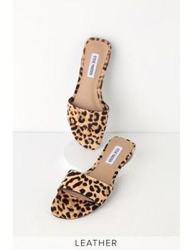 f63f6d6d62a Bev Leopard Cow Hair Slide Sandals by Steve Madden