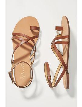 Splendid Sully Sandals by Splendid