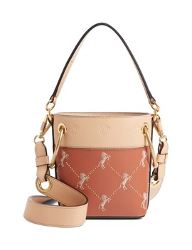 Roy Small Embroidered Leather Bucket Bag by ChloÉ